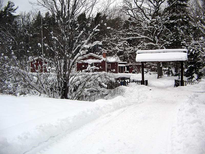 Hammargården om vintern